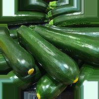 zucchini_icon1